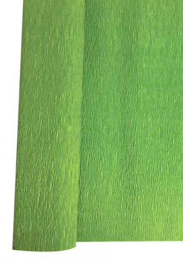 Green Crepe Paper Roll 50 x 250 cm Heyda