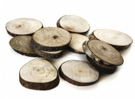 Wood Oval Slices 3 - 4 cm