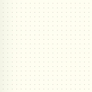 Dotted Notebook Kompagnon : Gold : 80 gsm : 96 sheets : 9.5 x 12.8 cm
