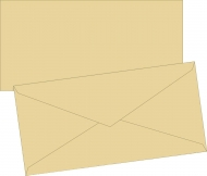 Grey Envelope DL (110 mm x 220 mm)