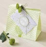 Heyda Paper Bags Mix Green