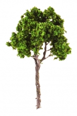 Tree For Scale Model, 90mm, 1 pc