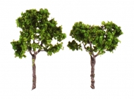 Tree For Scale Model, 60 mm, 2 pc