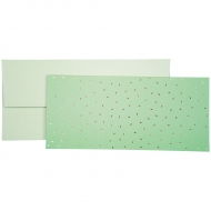 Cash/Vouchers Gift Envelope Stewo - Care - Mint with Gold Patterns