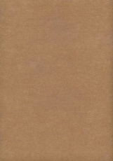 Kraft Paper : 70 gsm : Pack of 100 : А4