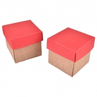 Set of 12 Kraft Paper Square Boxes : 4 x 4 x 4 cm : Red Lids
