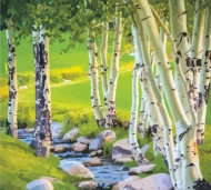 Rosa Paint by Numbers Acrylic Kit : Birch Trees