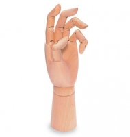 Wooden model of hand slanchogled 30 cm left